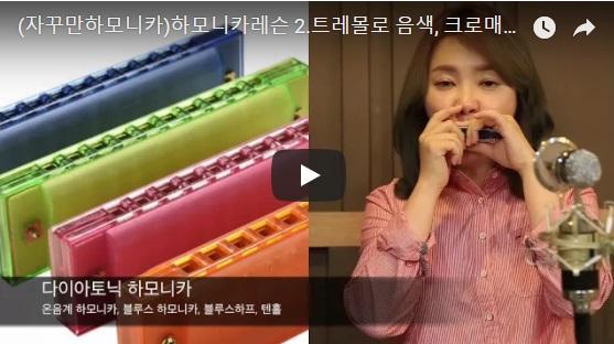 韓国のハーモニカ講師の動画(Harmonica の先生)
